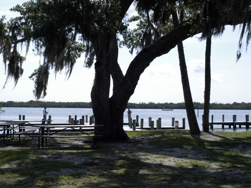 Harbour Heights Park