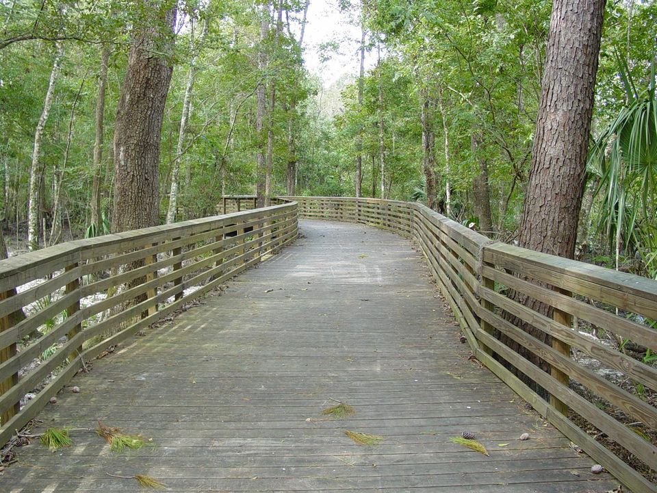 Loblolly Woods Nature Park