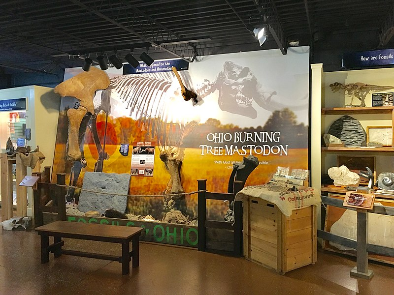 Akron Fossils and Science Center