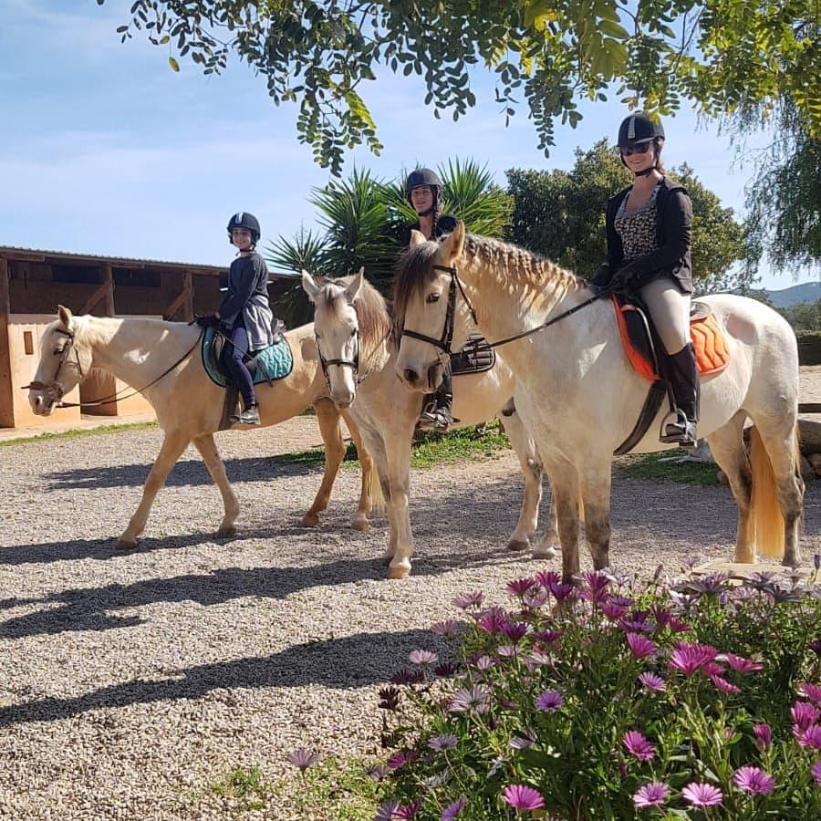 Horse Riding in Ibiza