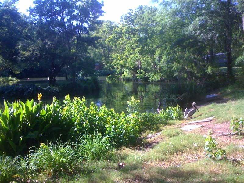 Louisiana Purchase Gardens and Zoo